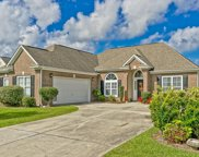 886 Willow Walk, Calabash image