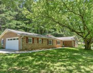 445 A  Chunns Cove Road, Asheville image
