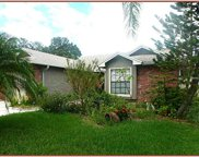 12811 Coverdale Drive, Tampa image