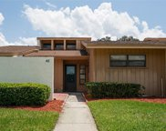 5225 Imperiallakes Boulevard Unit 46, Mulberry image