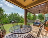 10638 Larch Grove Ct, Helotes image
