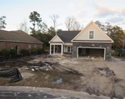 156 Swallowtail Ct., Little River image