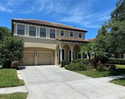 20314 Chestnut Grove Drive, Tampa image