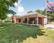 22195 Hays Mill Road, Elkmont image