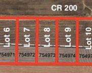 Lot 8 Cr 200, Sanger image