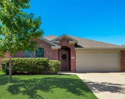 1564 Grassy View Drive, Fort Worth image