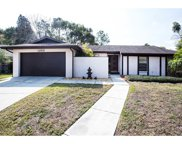 1205 Hiddenwood Ct Court, Valrico image