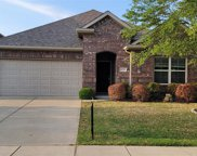 12513 Ocean Spray Drive, Frisco image