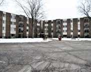 140 West Wood Street Unit 415, Palatine image