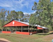 8460 Wolf Creek Rd, Pell City image