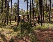 21B Wild Oak Drive Unit #20, Christopher Creek image