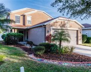 11434 Crestlake Village, Riverview image