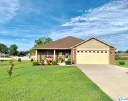 21242 Red Clover Lane, Elkmont image