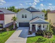 8750 Shady Pavillion Court, Land O' Lakes image