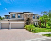 19404 Whispering Brook Drive, Tampa image