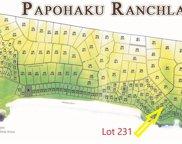 4040 Pohakuloa, Maunaloa image