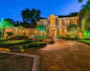 10412 Carroll Cove Place, Tampa image