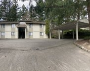 12901 149th St E, Puyallup image
