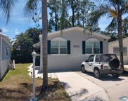 10825 Short Tailed Hawk  Circle, Estero image