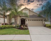 10913 Rockledge View Drive, Riverview image