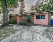 8408 Willow Forest Court, Tampa image