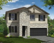 11615 Tribute Oaks, San Antonio image