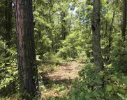 Lot 7 Chow Ln., Conway image