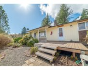 32258 HARRIS  DR, Cottage Grove image