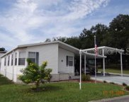 10101 Airetop Avenue, Dade City image