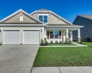 604 Ginger Lily Way, Little River image