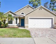 4272 Fox Hollow Circle, Casselberry image