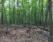 Treetops Unit 18.59 acres, Vanderbilt image