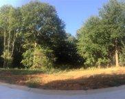 10 Vintage Oaks Way, Simpsonville image