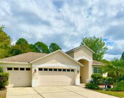 19219 Meadow Pine Drive, Tampa image