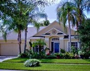 9731 Bay Colony Drive, Riverview image