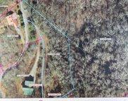 77 Kako Ridge, Sylva image
