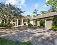 2415 Indian Pipe Way, Naples image