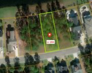 Lot 266 Fiddlehead Way, Myrtle Beach image