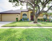 14916 Redcliff Drive, Tampa image