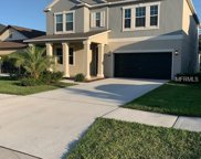 14017 Tropical Kingbird Way, Riverview image