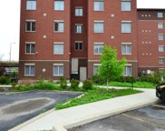 239 West 18Th Street Unit 1C, Chicago image