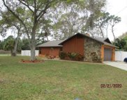 1794 Doncaster Road, Clearwater image
