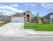 105 Meadow Wood Cv, Georgetown image