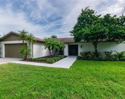 12103 Cypress Hollow Place, Tampa image