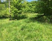 Lots 5&6 Bashan Hill Road, Worthington image
