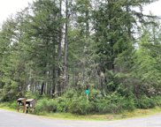 11219 Guthrie Rd, Anderson Island image