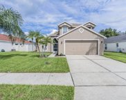 1248 Timber Trace Drive, Wesley Chapel image