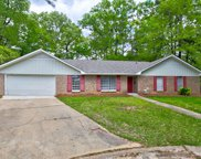 302 Lake Of Pines Dr, Jackson image