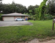 3315 Possom Trot Road, Valrico image