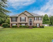 440 Wooden Trace Circle, Springville image